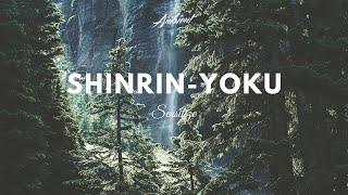 Sensitize - Shinrin-Yoku