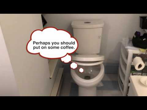American Standard Cadet 3 Dual Flush Toilet With A Nice Soft Close.
