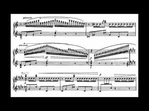 M. Ravel: Alborada del Gracioso - Miroirs (Vinnitskaya)