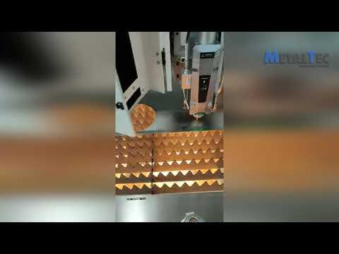 Оптоволоконный лазерный станок для резки металла MetalTec 1530B (MAX-1000W)