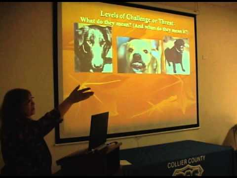 Social Signals in Dogs- A lecture by Dr. Melissa Shyan-Norwalt