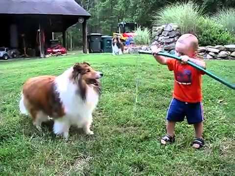 Em bé chơi với chó