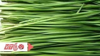 Tác dụng thần kỳ của rau hẹ | VTC