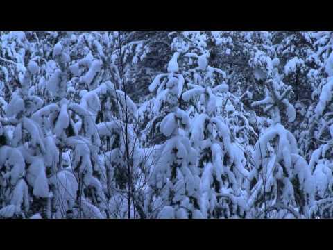 My country, Finland - Kotimaani Suomi - Leevi Madetoja - 芬蘭
