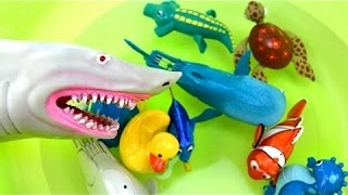 Finding Dory Wind Up Toys Nemo Learn Learning Names of Sea Animals Shark Attack Video Kids Children