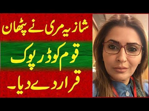 Shazia marri said pathan are darfook people-my deary