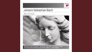 "Gambar cover Mass in B Minor, BWV 232 ""Hohe Messe"": Chorus - Kyrie eleison"