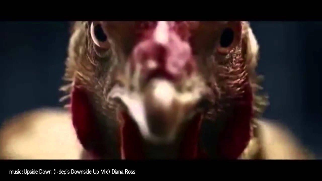 ответ на рекламу мерседеса с курицей