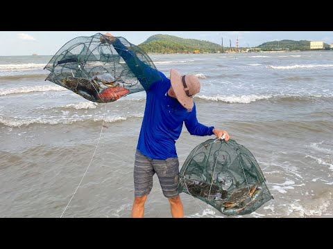 Search For Simple Fish Using An Umbrella Fishing Net On A Deserted Beach - Umbrella Fish Trap
