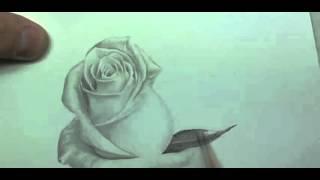 Рисуем розу карандашом | Crash ROSE #15(Рисование, как рисовать, рисовать карандашом, научиться рисовать, уроки рисования, как научиться рисовать,..., 2015-10-04T17:02:03.000Z)