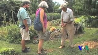 1 cụ già, 1 nông trại ngay giữa thành phố (VOA)