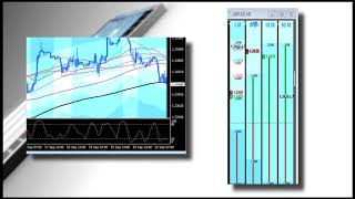 1m Trend Trade Dynamic Fibonacci Grid forex day trading software Live Forex Trade Room