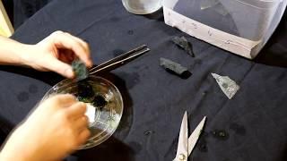 Что будет если заморозить аквариумный мох и какие мхи можно втирать часть 1
