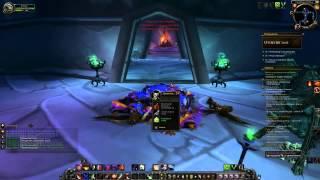 Сетеккские залы. Поводья повелителя воронов. World Of Warcraft