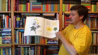 Анна Васильева. Мой гербарий. Цветы и травы