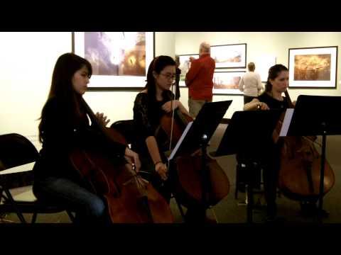 Underwater Ambience (Cello trio + electronics)