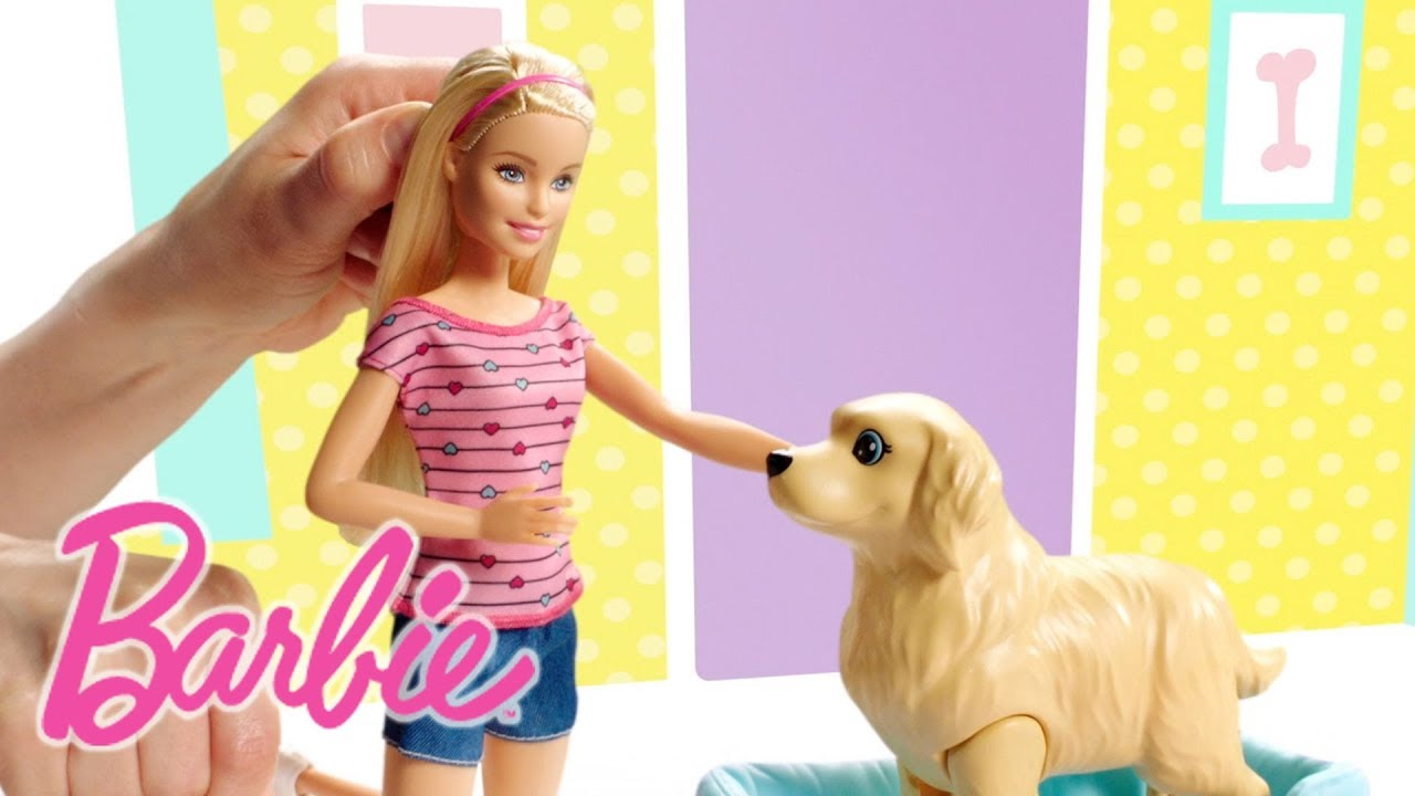 Barbie clinique v t rinaire fbr36 barbie youtube - Barbie veterinaire ...