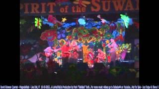 David Grisman Quintet - Magnoliafest - Live Oak, Fl  10- 19- 2002
