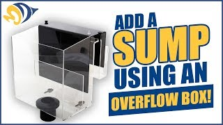 Add a Sump to Your Reef Tank Using an Overflow Box