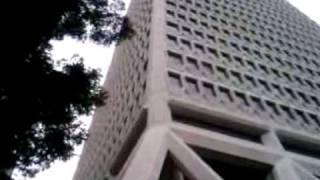 The Transamerica Pyramid -San Francisco Skyscraper