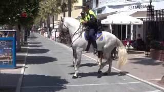 Mounted police - Runaway horse police - CAVALLO IMBIZZARRITO DELLA POLIZIA