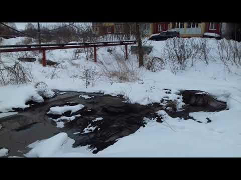 Экологический беспредел в городе Богородске Нижегородской области