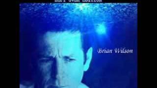 Brian Wilson - I'm Broke
