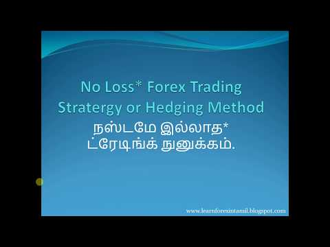 No Loss or Hedging Strategy