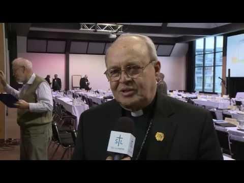Cardinal Ortega y Alamino
