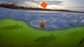 СКОЛЬКО ЗДЕСЬ ЩУКИ Поставили подводные камеры и были в ШОКЕ Рыбалка 2021