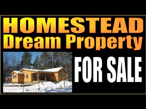 HOMESTEAD DREAM PROPERTY FOR SALE. Gardens, Chicken Coop, Acreage.