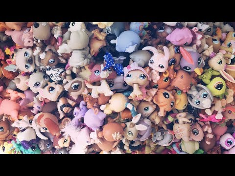 My LPS Collection! Over 500 LPS!