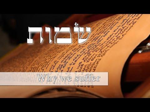 Parashat Shmot - Why do we suffer? - Rabbi Alon Anava
