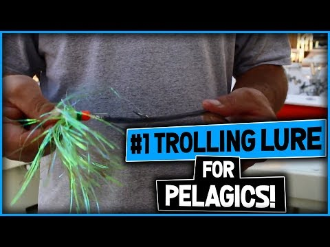 #1 Trolling Bait Lure For Fishing In South Florida