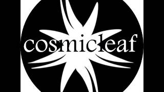 #9 Discovering Cosmicleaf.com - Mix & Selection by Side Liner