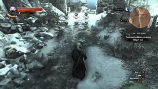 The Witcher 3 Alchemy Build