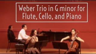 Weber Trio in G minor for Flute, Cello, and Piano