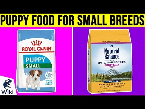 Best grain free dog food for small breed dogs