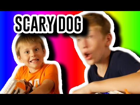 Nerf war against the big dog scary skeleton