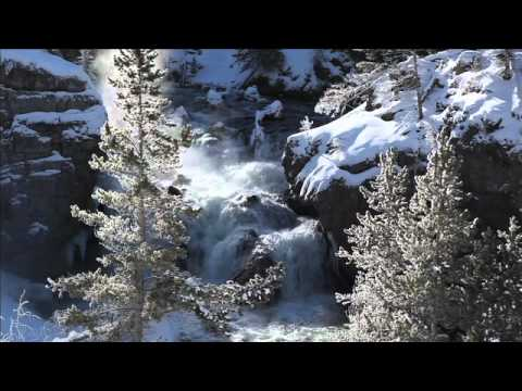 A Winter Yellowstone Tour From Tauck
