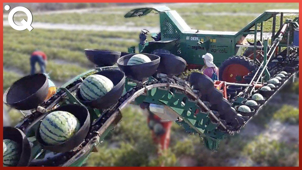 Modern Agriculture Machines That Are At Another Level ▶6