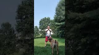 Amazing Martial Arts Warm Up Exercise 2