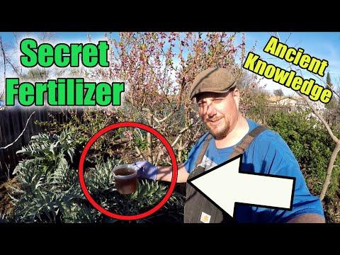 This Secret Garden Fertilizer Recipe Will Take Your Gardening Success To The Next Level!!