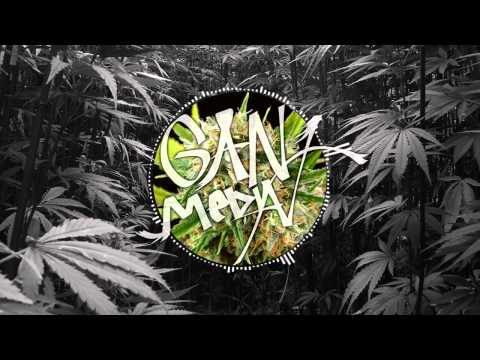 Damian Marley  Welcome to Jamrock GRiZ Remix