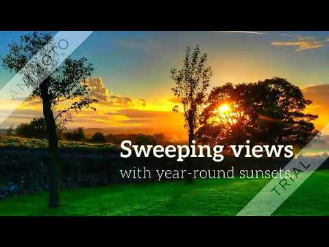 Evergreen Landscaping Solution Qatar