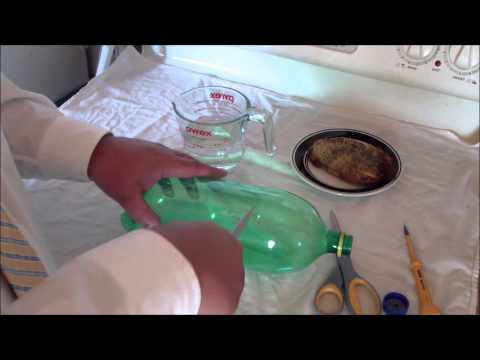 Fly Trap - Simple DIY Method to Kill Houseflies