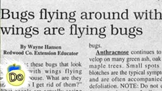 30 More Ridiculous Real Newspaper Headlines