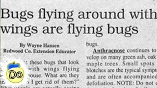 30 More Ridiculous Real Newspaper Headlines