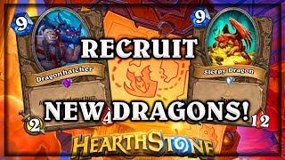 Sleepy Dragon & Dragon Hunter Recruit Warior 🍀🎲 ~ Kobolds & Catacombs ~ Hearthstone