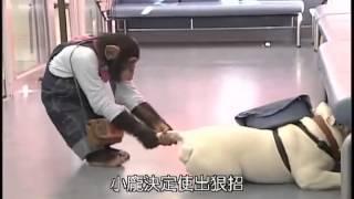 Phim Nhat Ban | Chó và khỉ thông minh ở nhật bản 2 | Cho va khi thong minh o nhat ban 2